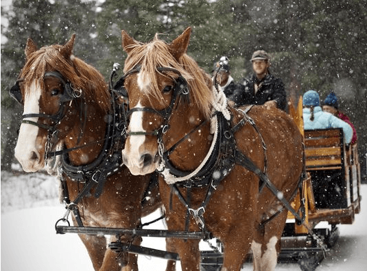 Sleigh Ride dinner in winter at Lone Mountain Ranch