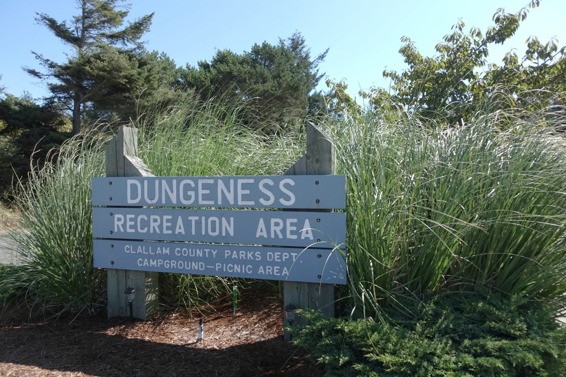 Dungeness Recreation Area Campground near Olympic National Park
