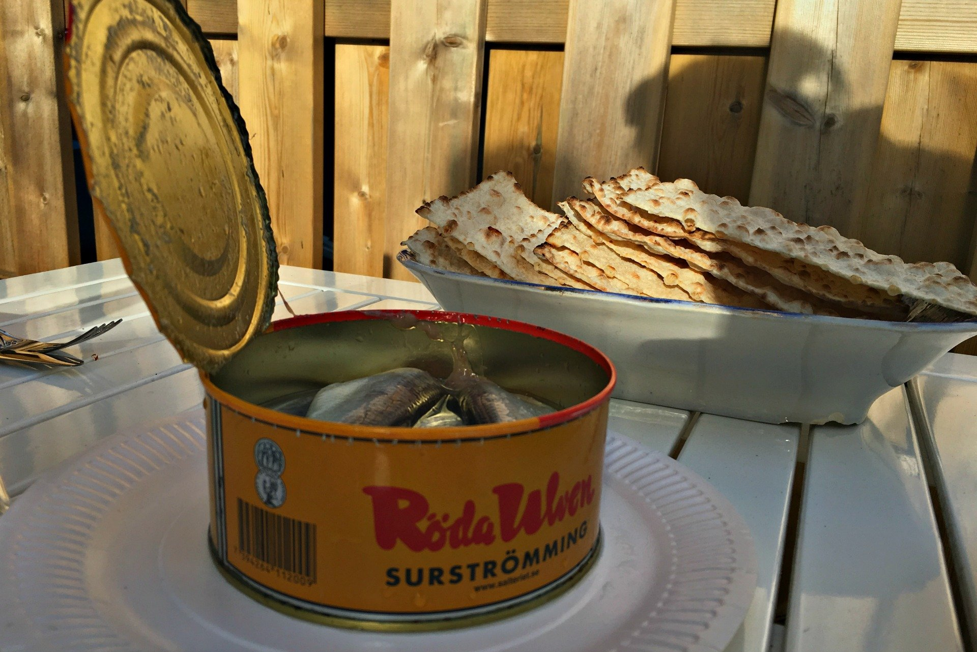 surströmming or sour herring