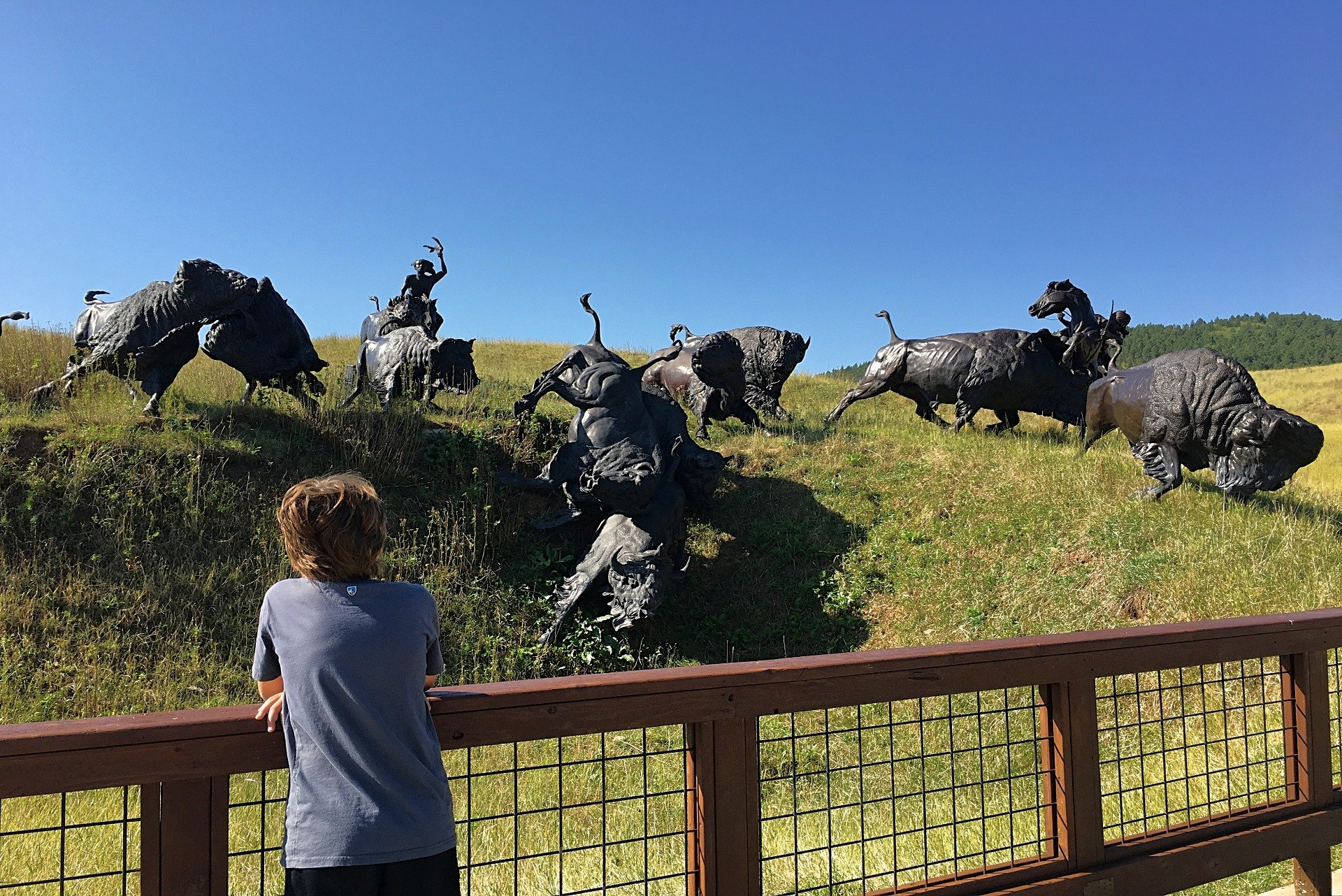 Bison sculptures at Tatonka Story of the Bison in Deadwood